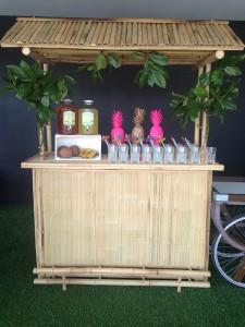 Tropical Bar boda Love Story Novias Wedding Planner Zaragoza